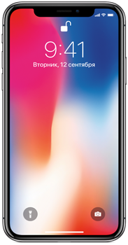 Сотовый телефон Apple iPhone X 256GB Space Grey (A1902)